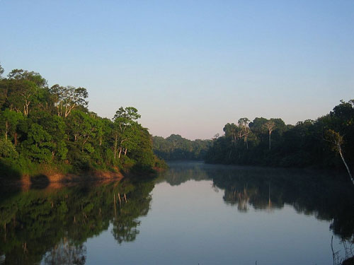 Amazon Rainforest River Tour
