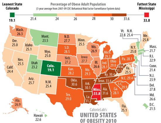 Health Infographic: The Fattest States