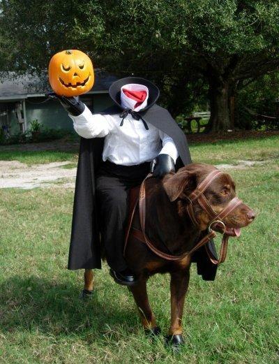 Dog in Headless Horseman Costume