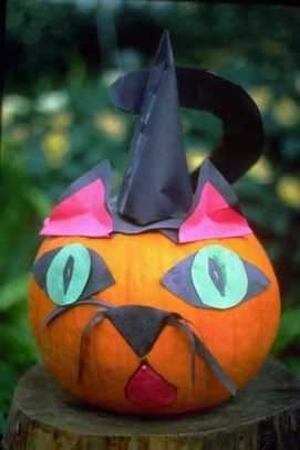 Cat pumpkin with witches' hat